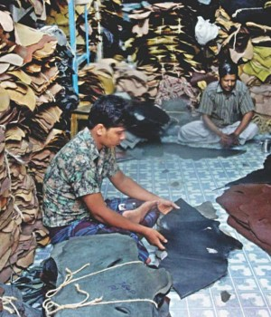 Leather sector needs soft loan to shift tanneries